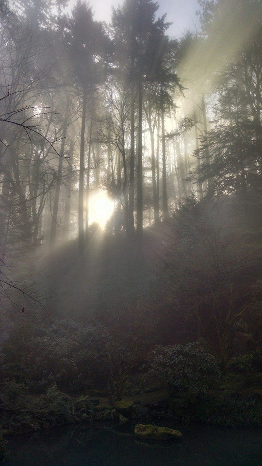 Light Photo